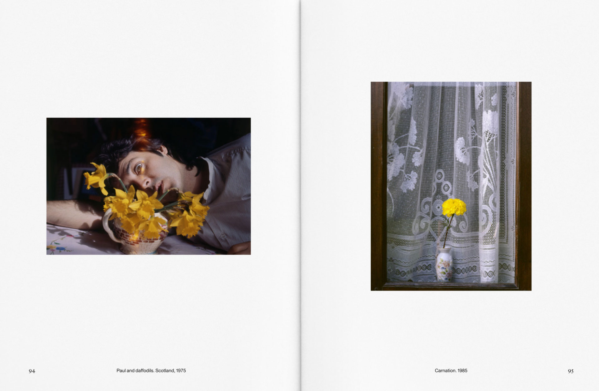 Carol Montpart Studio - The Plant Issue 13